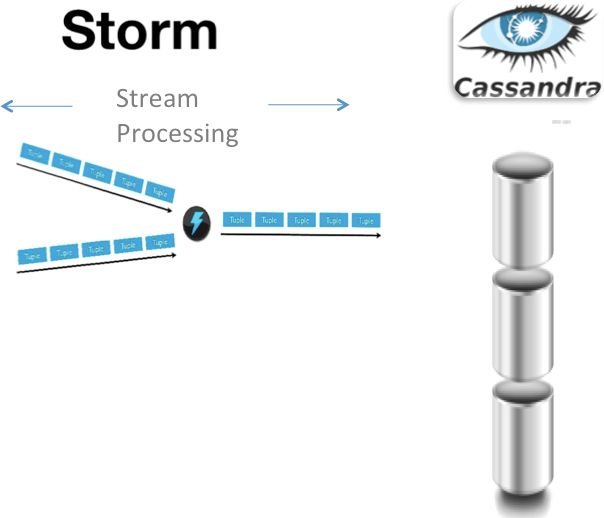 In This Architecture, Storm Is Used For Processing Data As It Comes In And  The NoSQL Data Store Is Used As The Output For That Processing As Well As  For ...